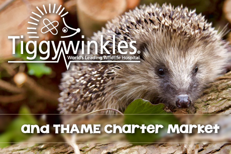 Tiggywinkles and Thame Charter Market