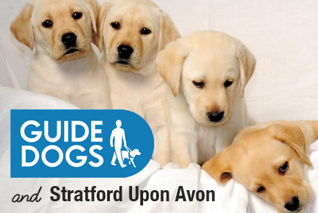 GUIDE DOGS & STRATFORD